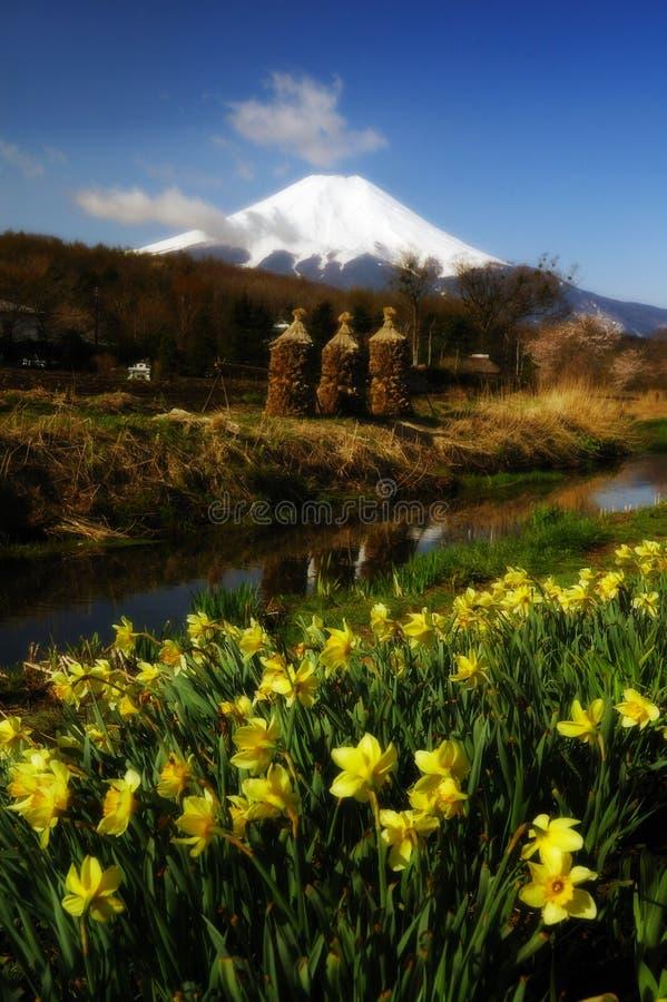 Frühling an Mt Fuji lizenzfreie stockfotos