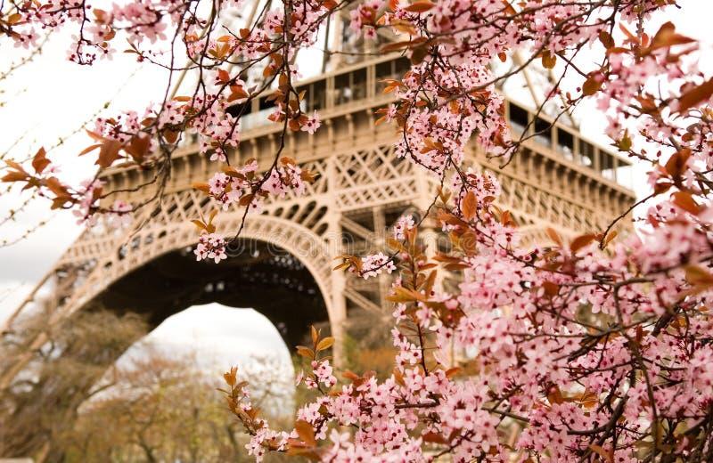 Frühling in Paris lizenzfreies stockfoto