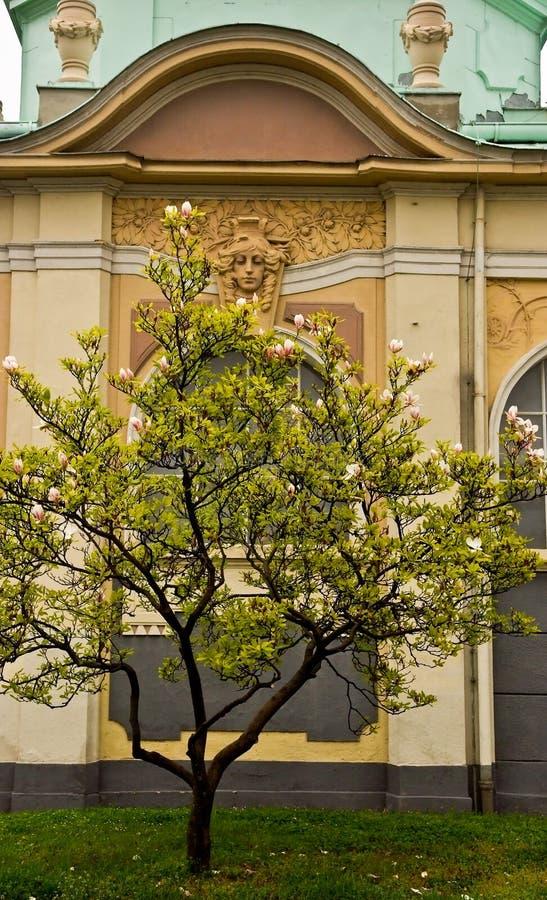 Frühling in Prag Czechia lizenzfreies stockfoto