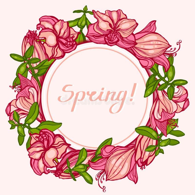Frühling! Runder Rahmen mit Blumen Amaryllis, Hippeastrum und Succulents Crassula Glückwünsche, Einladungskarte Hand gezeichnet lizenzfreie abbildung