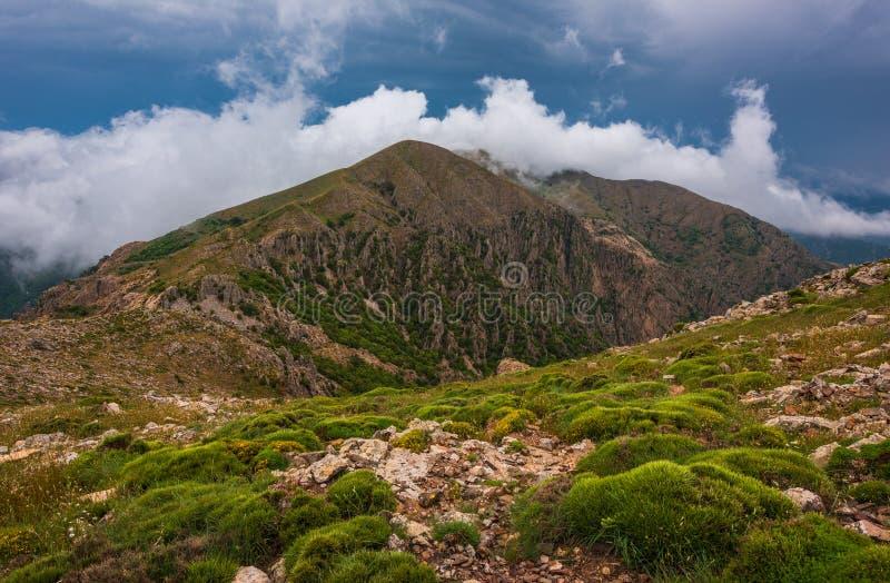 Frühling vetation in den Bergen mit Wolken lizenzfreie stockbilder