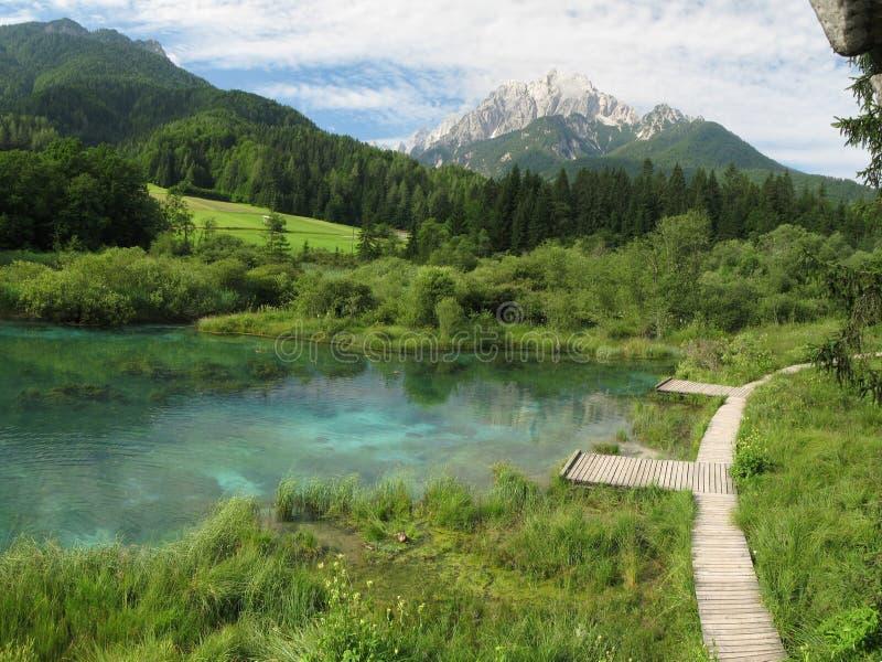 Frühling von Fluss Sava. lizenzfreies stockbild