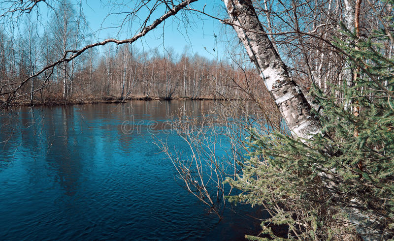 Frühlingsüberschwemmung auf dem Fluss lizenzfreies stockbild