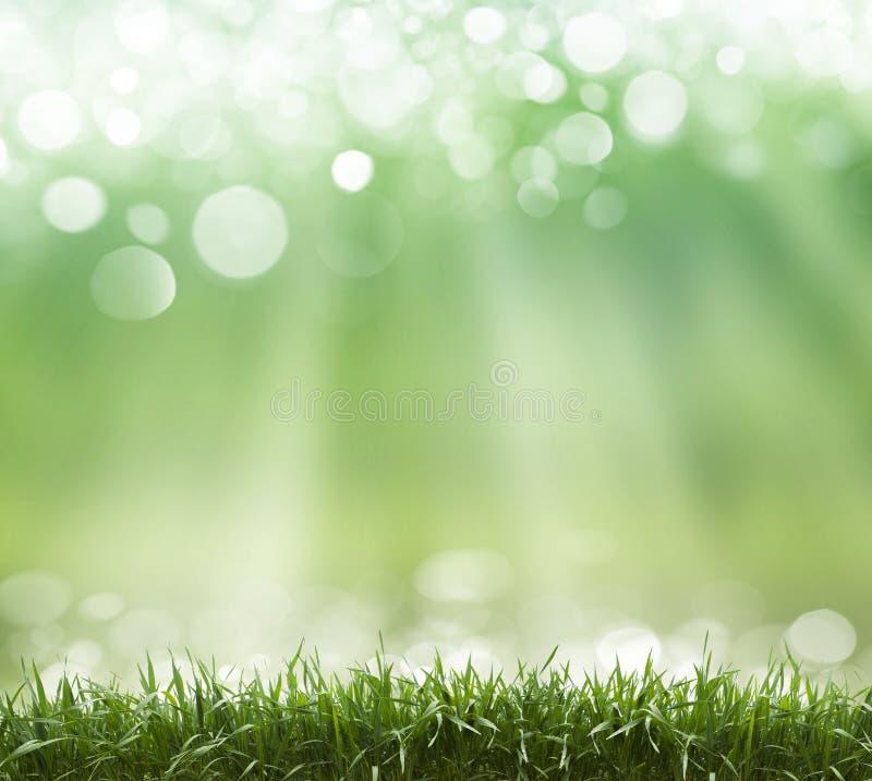 Frühlings-abstrakter Hintergrund lizenzfreie stockfotografie