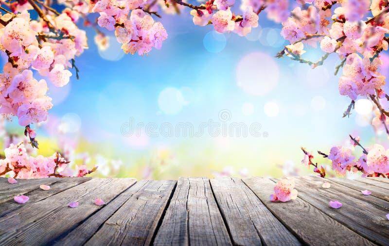 Frühlings-Anzeige - rosa Blüten lizenzfreie stockfotos