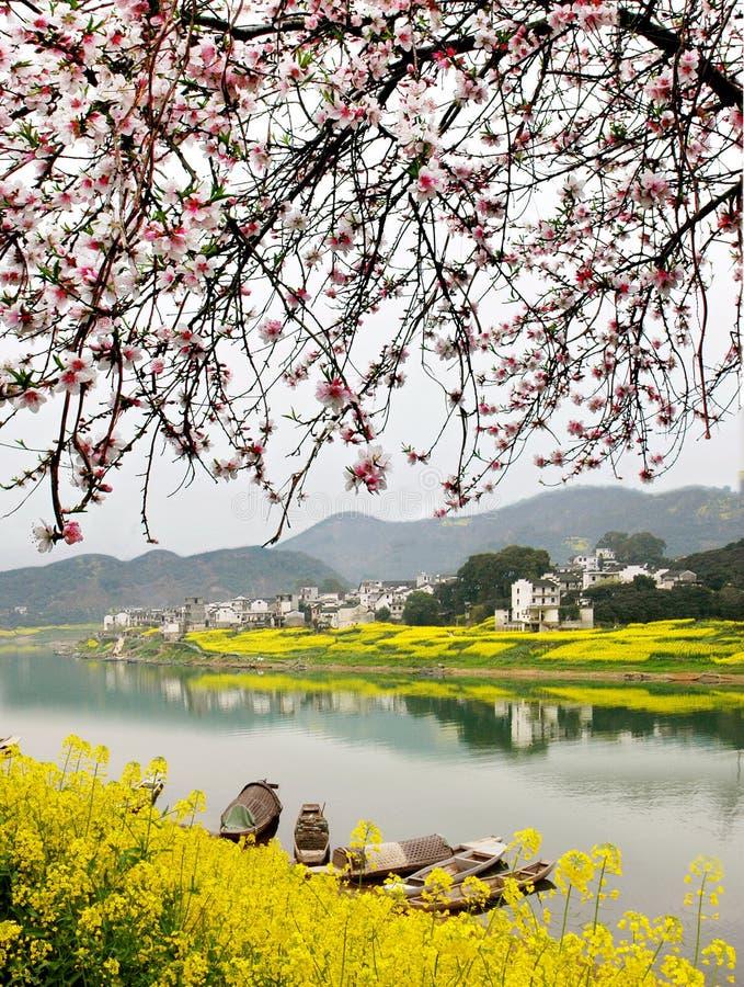 Frühlings-Fluss lizenzfreie stockfotos