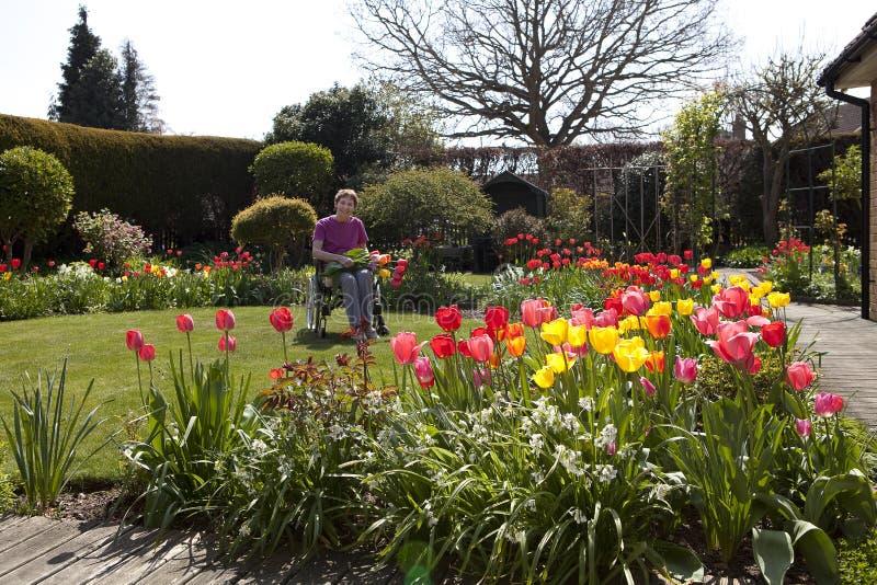 Frühlings-Garten lizenzfreies stockbild
