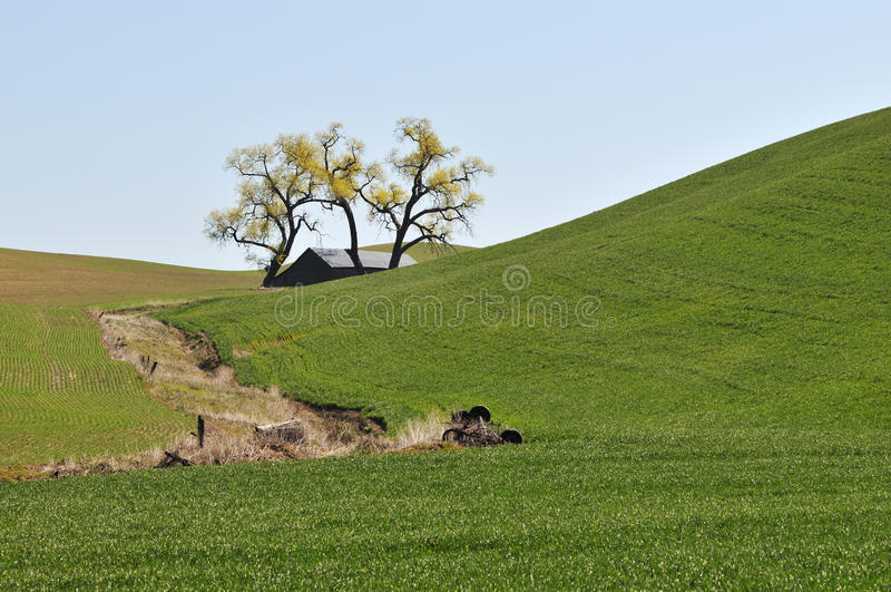Frühlings-Landschaftszene in Colfax stockfoto