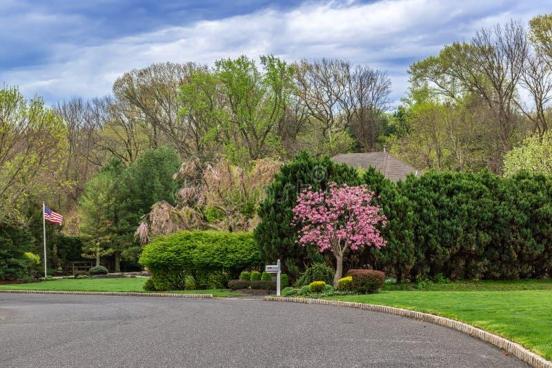 Frühlings-Nachbarschaft lizenzfreie stockbilder