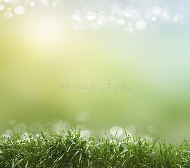 Frühlings- oder Sommerhitzezusammenfassung lizenzfreies stockbild