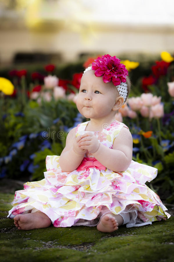 Frühlings-Schätzchen im Blumen-Garten lizenzfreies stockfoto