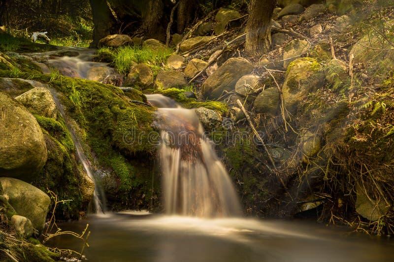 Frühlings-Wasserfall Tiverton Ontario Kanada stockfoto