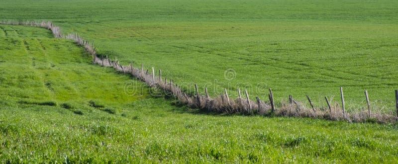Frühlingsberglandschaftszaun auf einer grünen Wiese stockfotos