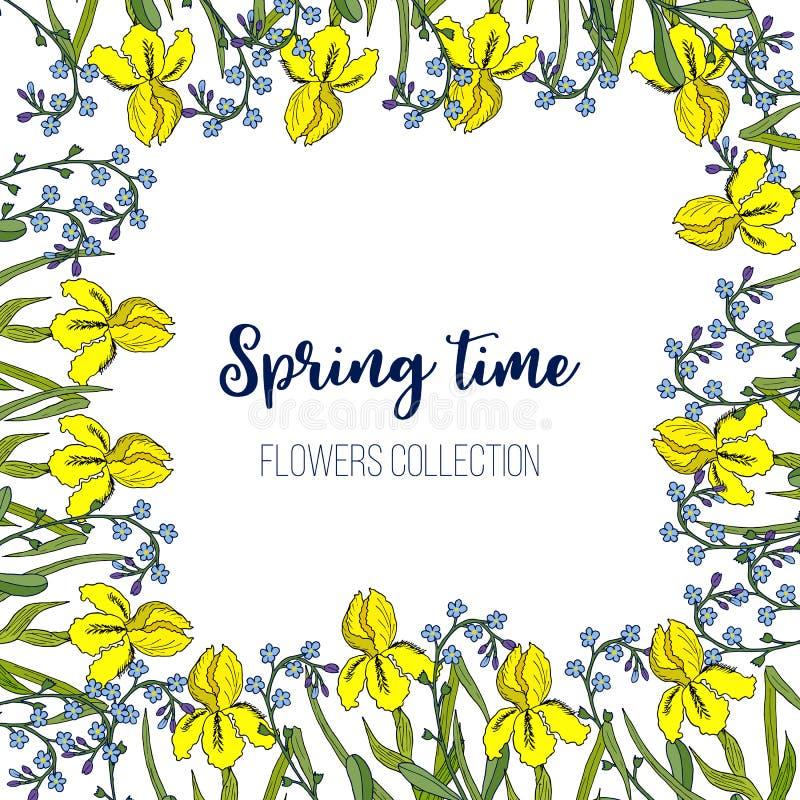 Frühlingsblumen Iris und Vergissmeinnichtrahmen stock abbildung