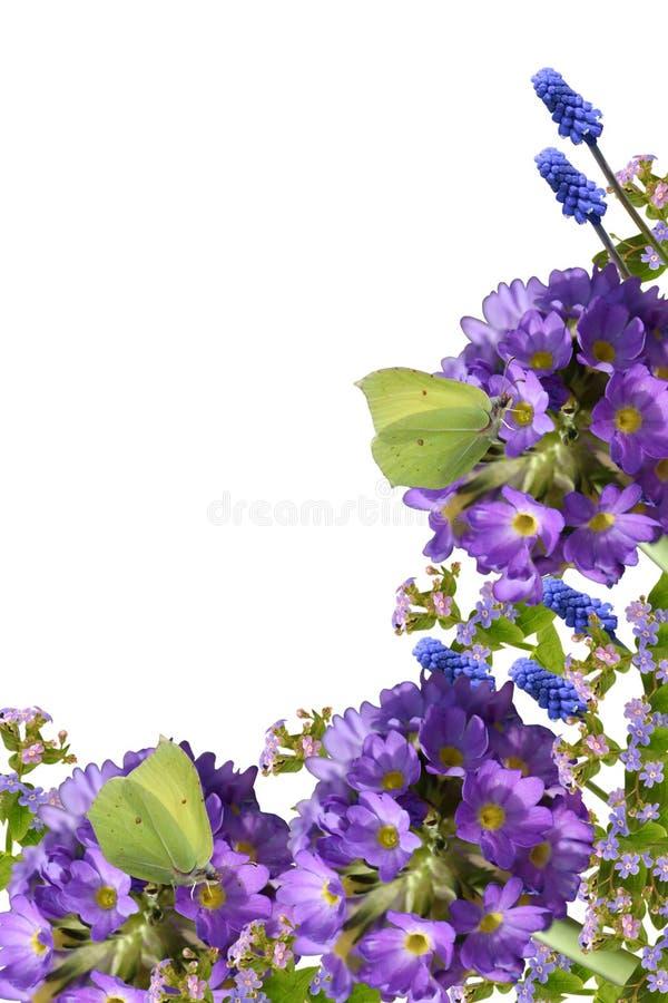 Frühlingsblumen und -basisrecheneinheiten lizenzfreies stockfoto