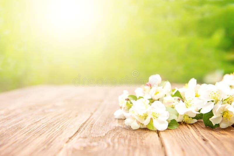 Frühlingsblumen von blühenden Apfelbaumasten auf rustikalem Holztisch über grünem Garten stockfotografie