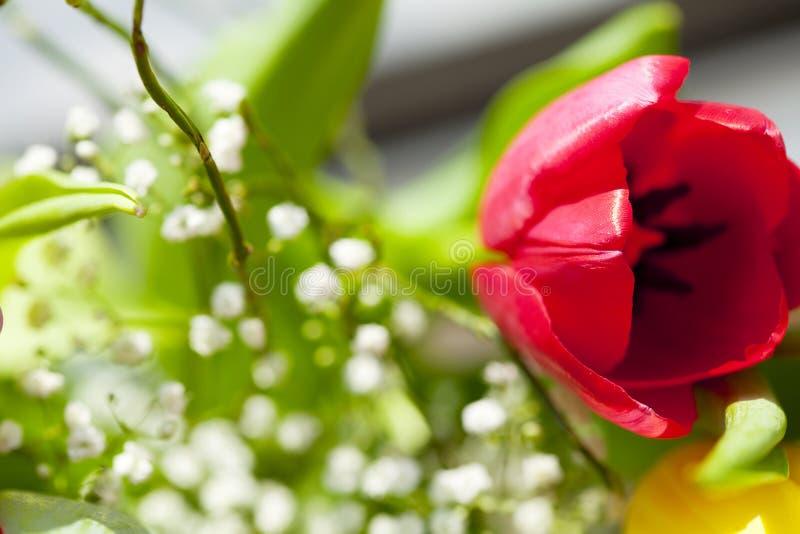 Frühlingsblumenstrauß mit Tulpen lizenzfreie stockfotos
