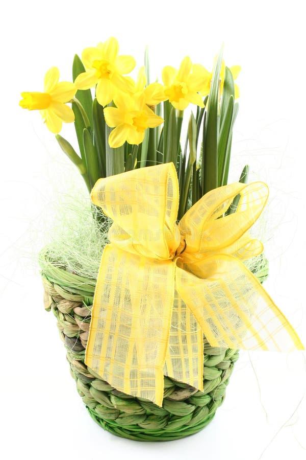 Frühlingsdekoration lizenzfreie stockbilder