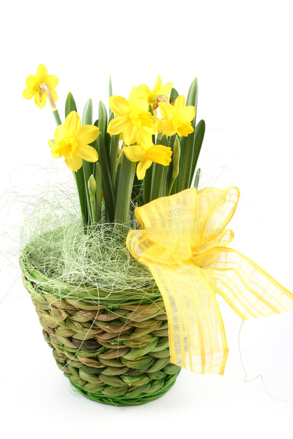 Frühlingsdekoration stockbild