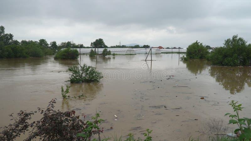 Frühlingsfeld überschwemmt durch Hochwasser von einem kleinen Fluss stockfotos