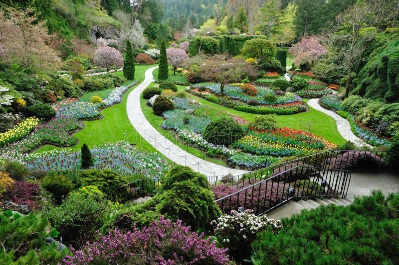 Frühlingsgarten stockbild