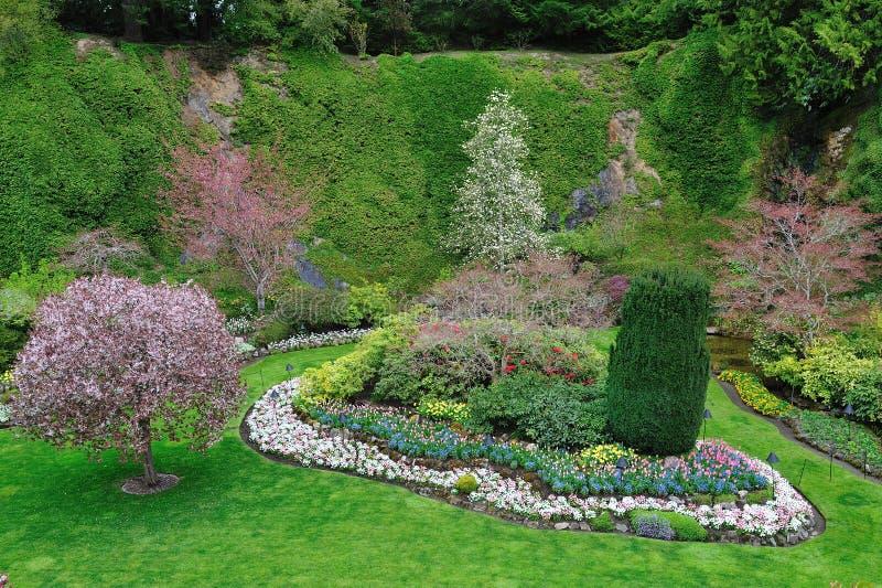 Frühlingsgarten stockfotografie