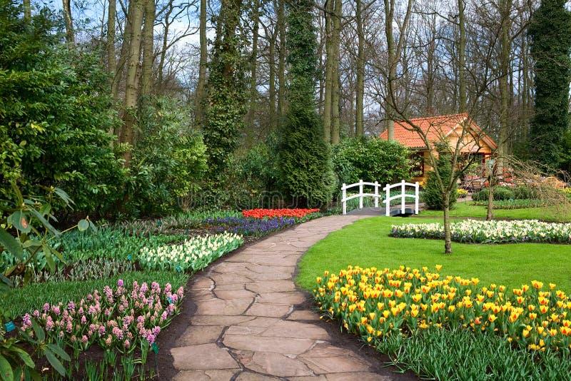Frühlingsgarten stockbilder