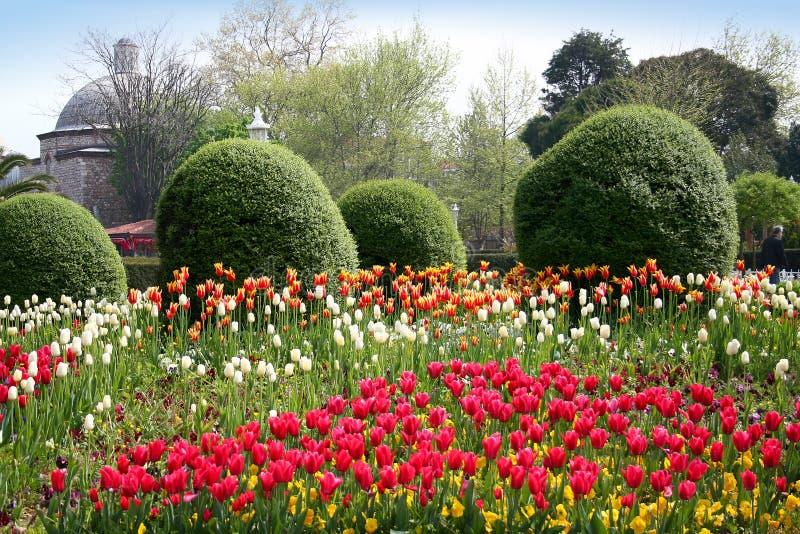 Frühlingsgarten in Istanbul stockbild