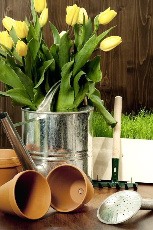 Frühlingsgartenarbeit stockfotografie