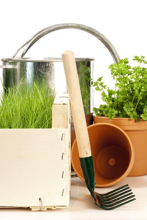 Frühlingsgartenarbeit lizenzfreies stockbild