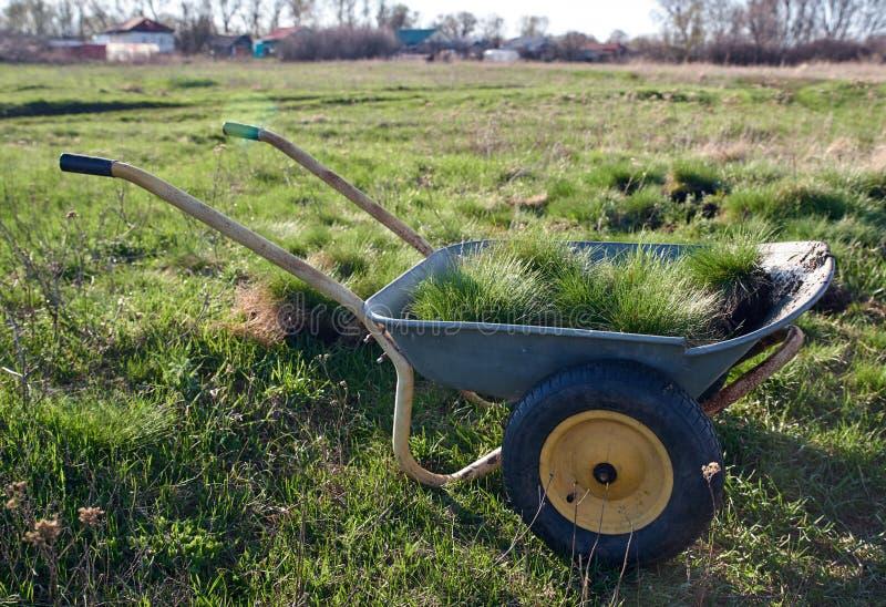 Frühlingsgartenarbeit und -landschaftsgestaltung Schubkarre geladen mit Rasen mit grünem Gras stockbild