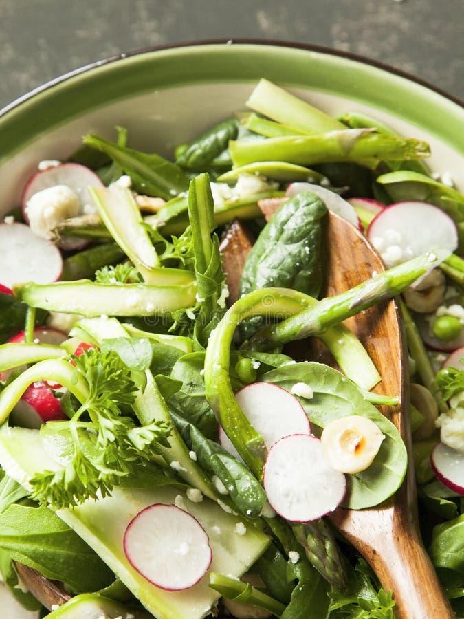 Frühlingsgemüsesalat mit Spargel, Zucchini, Rettich, Spinat lizenzfreie stockfotografie