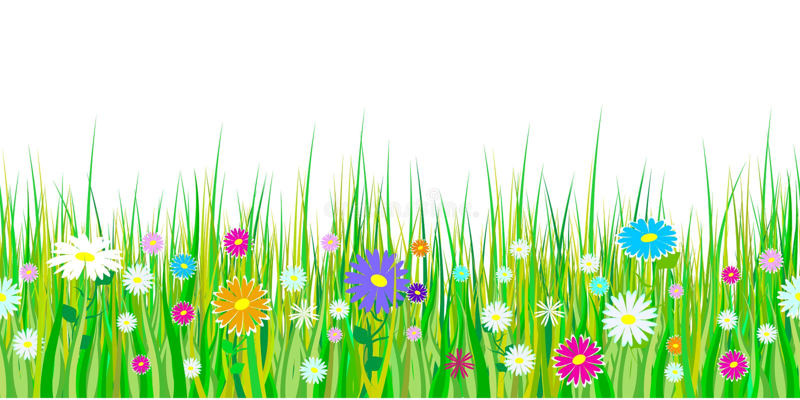 Frühlingsgras und Blumengrenzen Nahtlose Muster Ostern-Dekoration mit Frühlingsgras und -wiese blüht Lokalisiert auf weißem backg stock abbildung
