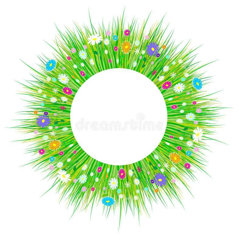 Frühlingsgras und Blumengrenzen Ostern-Dekoration mit Frühlingsgras und -wiese blüht Kreis, lokalisiert auf weißem Hintergrund VE lizenzfreie abbildung