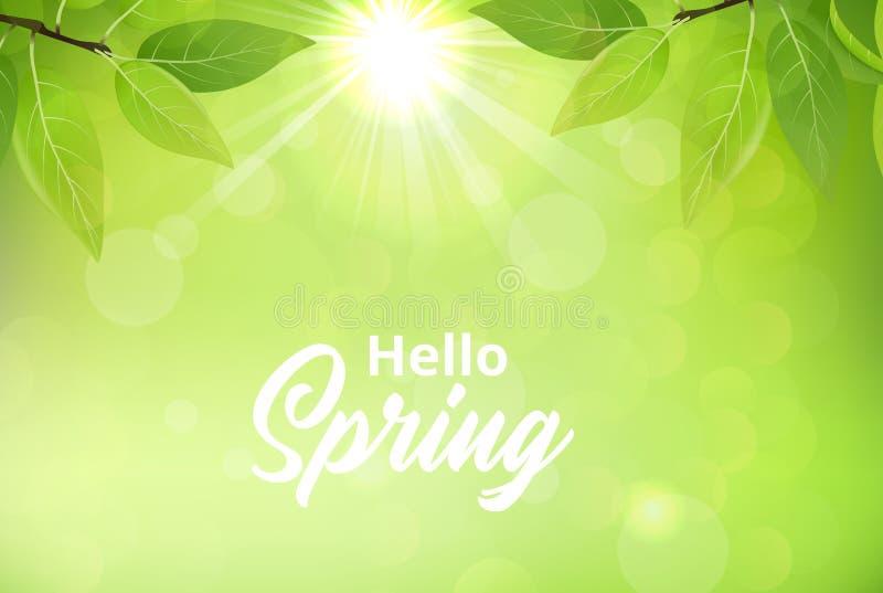 Frühlingshintergrund mit grünen Blättern vektor abbildung