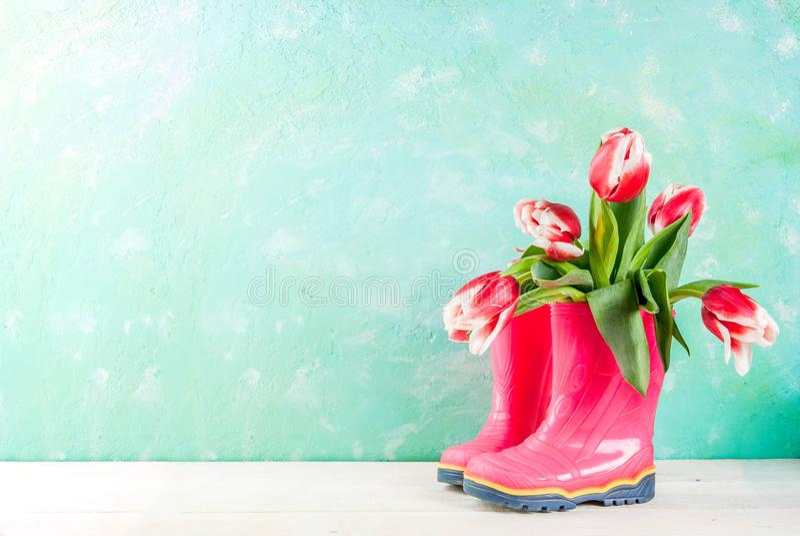 Frühlingskonzept mit Tulpen stockfotos