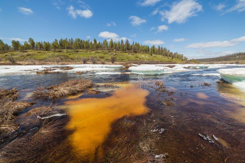 Frühlingslandschaft auf einem Nebenfluss in Süd-Yakutia während eines Eisbruches lizenzfreie stockfotografie