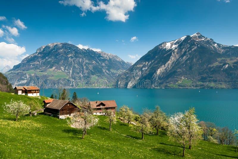 Frühlingslandschaft in dem See lucern lizenzfreie stockfotografie