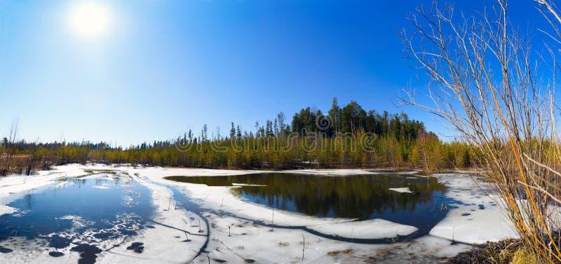 Frühlingslandschaft, Waldsee, Panorama lizenzfreies stockfoto