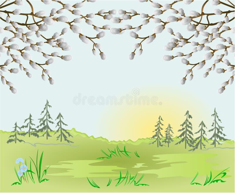Frühlingslandschafts-Wald-Ostern-Hintergrund und Pussyweide im Gras mit Blumenplatz für Textweinlese-Vektorillustration stock abbildung