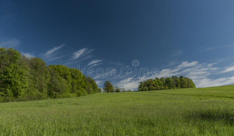 Frühlingsmorgen in Varnsdorf-Region stockfoto
