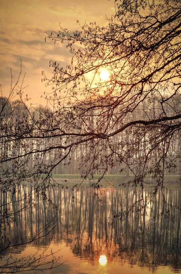 Frühlingsmorgenlandschaft lizenzfreies stockfoto
