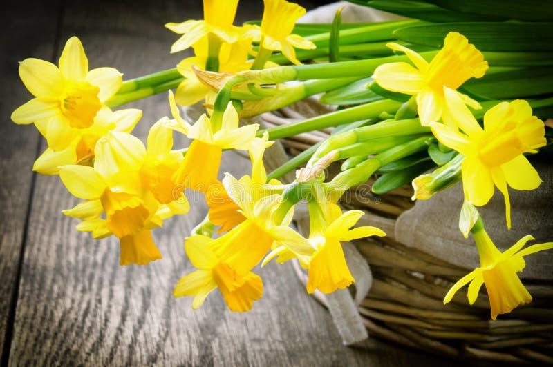 Frühlingsnarzisse in einem rustikalen Weidenkorb stockfotografie
