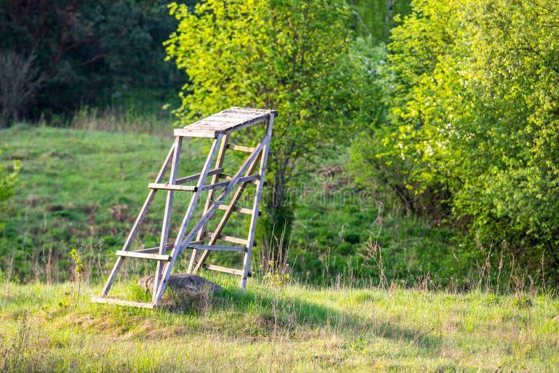 Frühlingsnaturwald- und -jagdführer lizenzfreie stockfotos