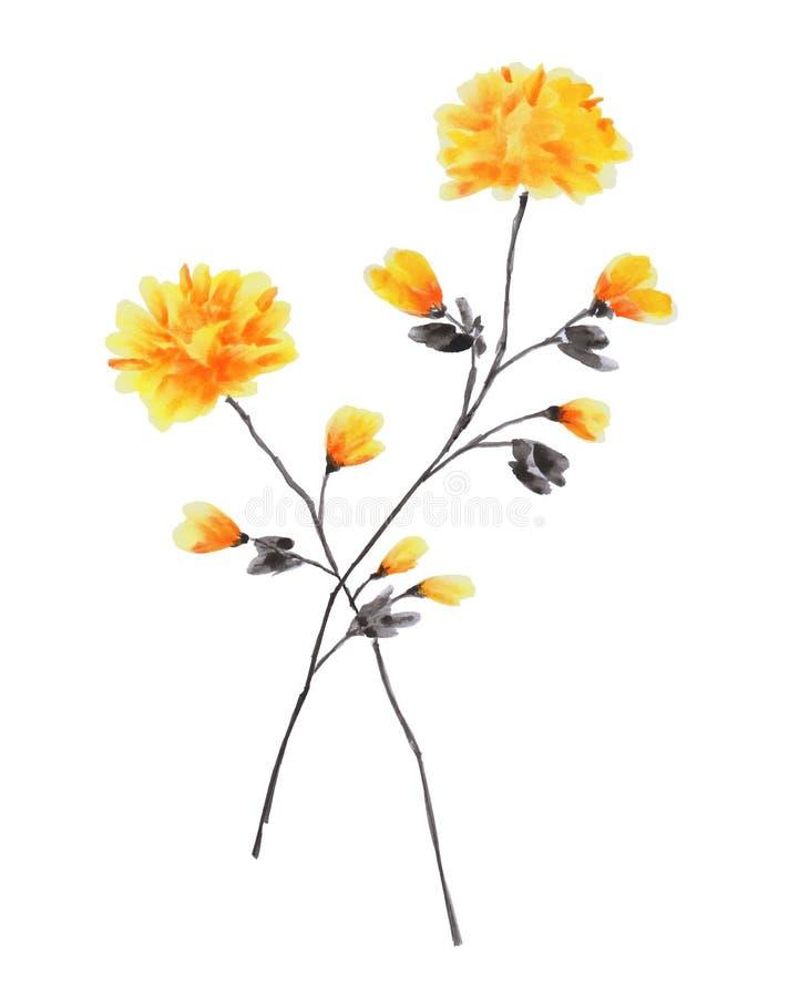 Frühlingsniederlassungen Des Rosafarbenen Baums Mit Gelben Blumen ...