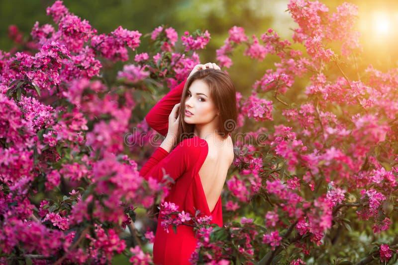 Frühlingsnote Glückliche schöne junge Frau im roten Kleid genießen neue rosa Blumen und Sonnenlicht im Blütenpark bei Sonnenunter lizenzfreie stockfotografie