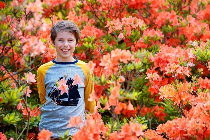 Frühlingsporträt des netten attraktiven Jungen mit 10-jährigen, der im Garten nahe bei blühendem rosa Rhododendron aufwirft stockbild