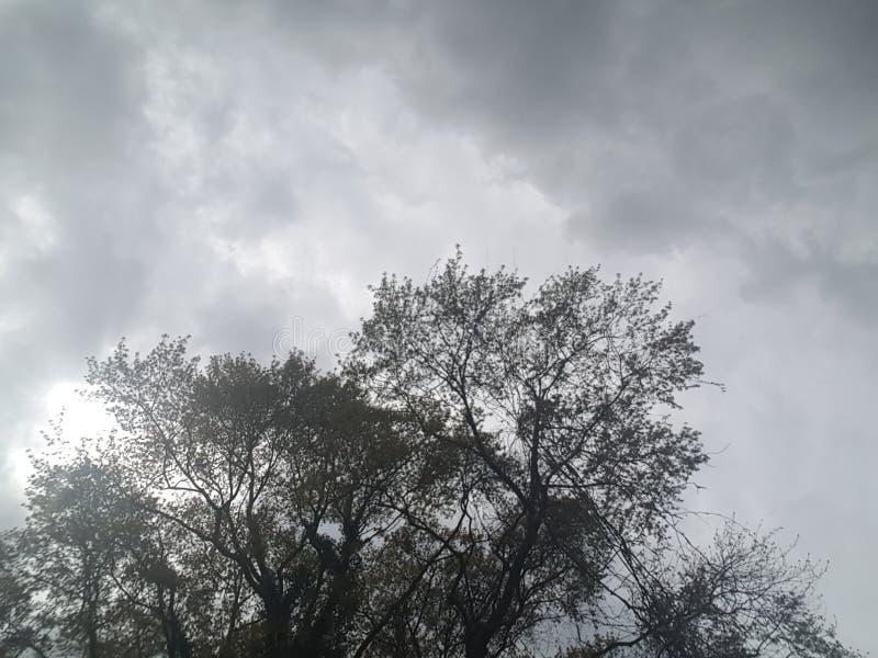 Frühlingsregensturmrollen herein stockfotografie