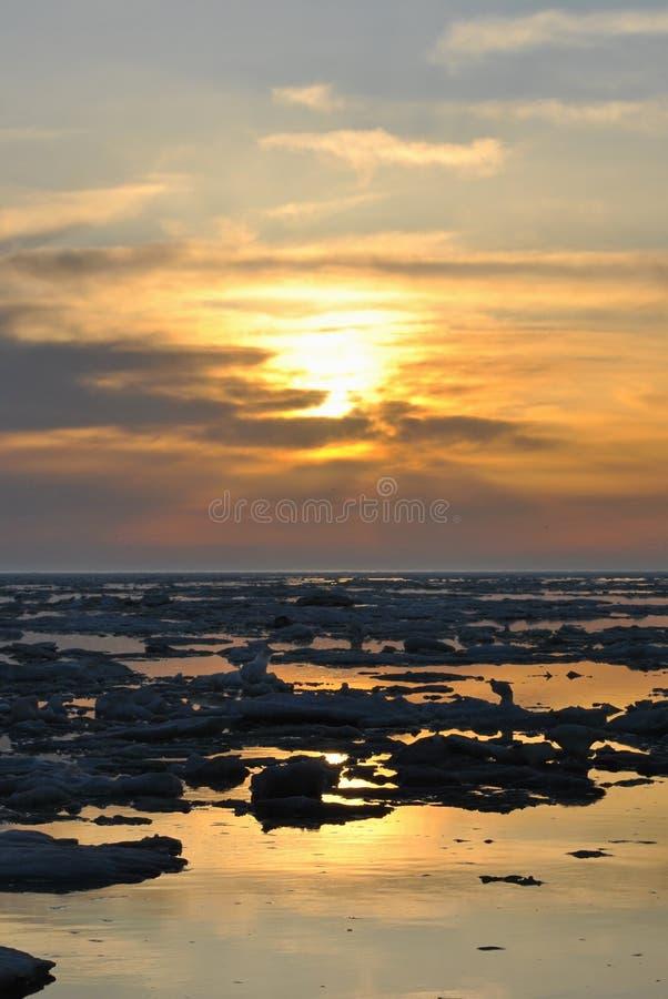 Frühlingsschwimmen des Eises stockfotos