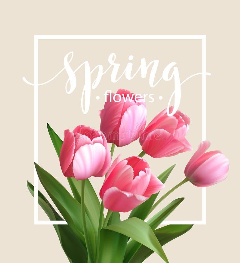 Frühlingstext mit Tulpenblume Vektor lizenzfreie abbildung